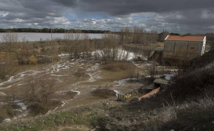 El río Adaja pasa desbordado por Valdestillas y Matapozuelos