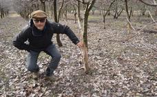 «Tengo 400 cerezos y 200 se han visto afectados por la plaga de conejos»