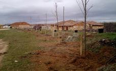 Los vecinos de Riaguas inician la reforestación del pueblo