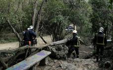 El viento causa decenas de desperfectos en Valladolid y obliga a cerrar el Campo Grande