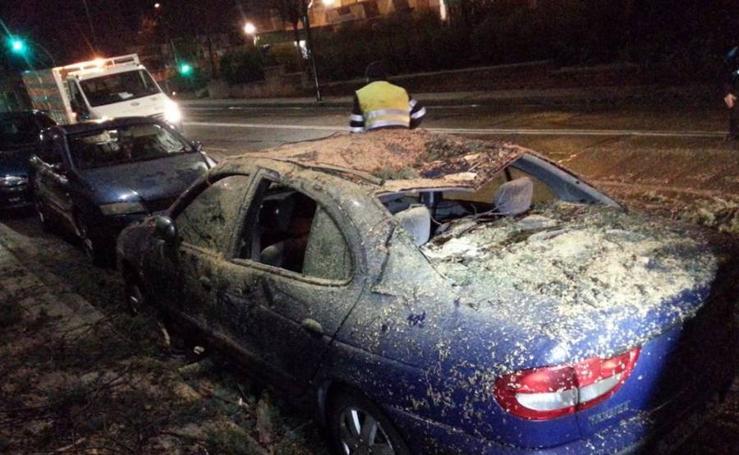 Los efectos del temporal de viento en Valladolid