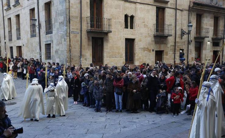 Procesión de 'La borriquilla' en Salamanca