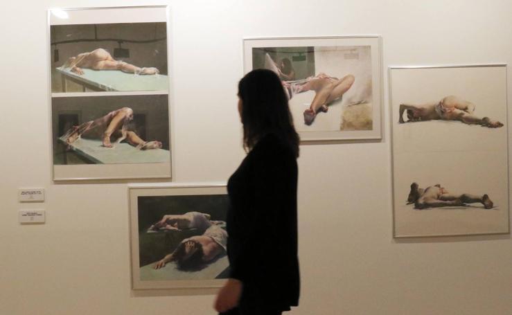 Exposición de Narciso Maisterra en el Palacio Pimentel de Valladolid