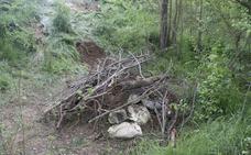 Hallado un caballo muerto junto a la Senda del Duero en Peñafiel