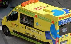 Fallecidos dos motoristas vizcaínos en un accidente en la N-629