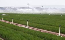 Urcacyl apoya la mejora del regadío en el Carracillo para fijar población rural