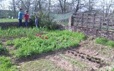 La Diputación de Zamora retoma el programa de huertos escolares ecológicos