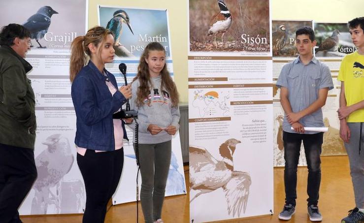 Inauguración de 'Expo Aves. A vista de Pajarillos'