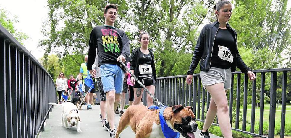 Una marcha solidaria para visibilizar el autismo y el abandono animal