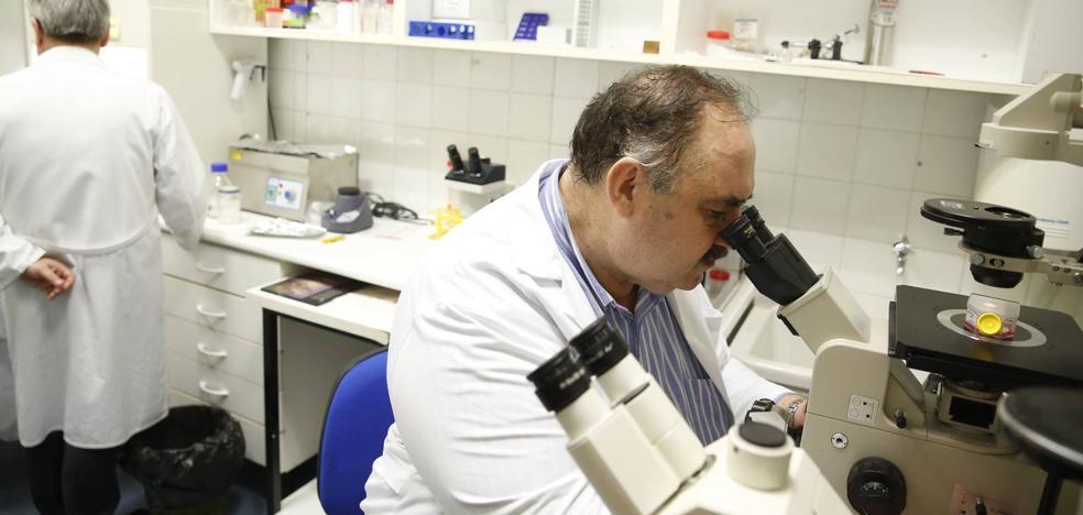 Las facultades de Medicina de Salamanca y Valladolid, entre las diez mejores de España