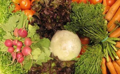 Los 7 consejos de una nutricionista para adelgazar
