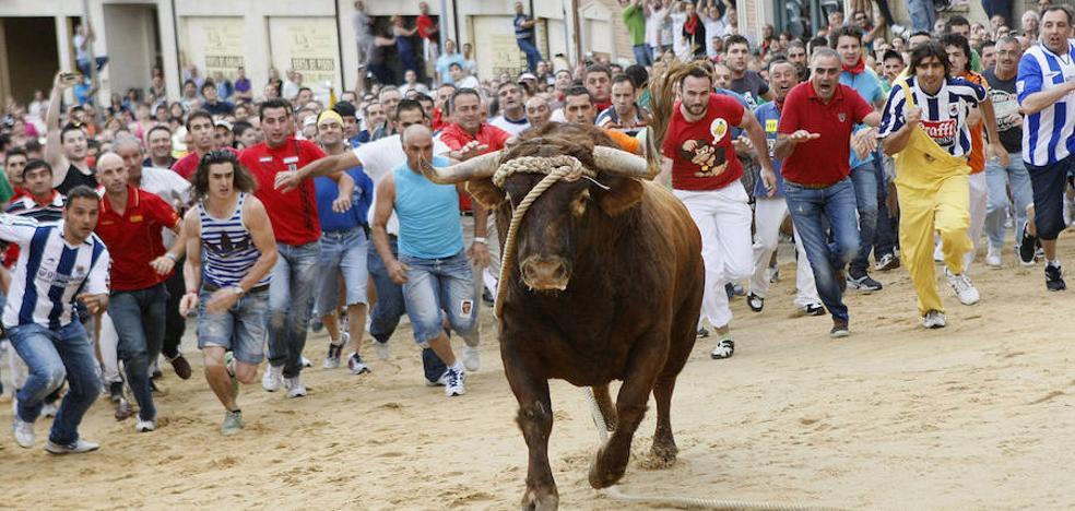 Benavente celebra esta tarde el Toro Enmaromado