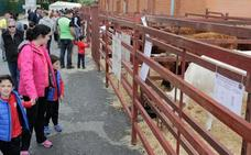 Feria Agroganadera vence al mal tiempo y cierra con éxito