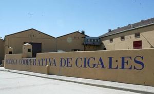 Cuatro Rayas consultará a sus socios el domingo la absorción de la cooperativa de Cigales