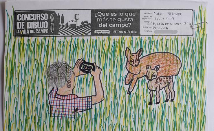 Trabajos de 5º de Primaria en la modalidad de dibujo del II Concurso de Dibujo y Cómic 'La vida del campo'