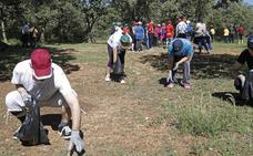 Voluntarios de color verde en Palencia