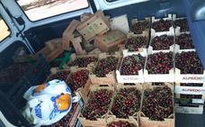 La Policía Local se incauta de 580 kilos de cerezas en tres puestos sin licencia del rastro