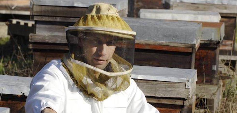 Los bomberos atienden en dos días diez avisos por la proliferación de colmenas en Segovia