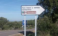 La Diputación señaliza la ruta turística del Toro Bravo y Dehesa Salmantina