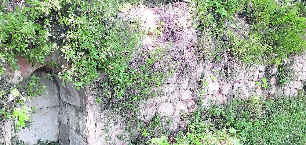 Laguna recuperará la fuente de San Pedro Regalado con un programa de voluntariado