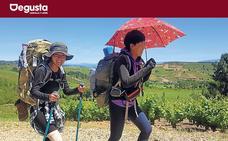 El Camino entre viñedos