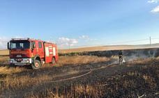 Un incendio arrasa cuatro hectáreas de cereal en Valladolid