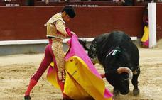 Dos corridas de toros, cuatro encierros, cortes y becerrada en la feria de Cantalejo