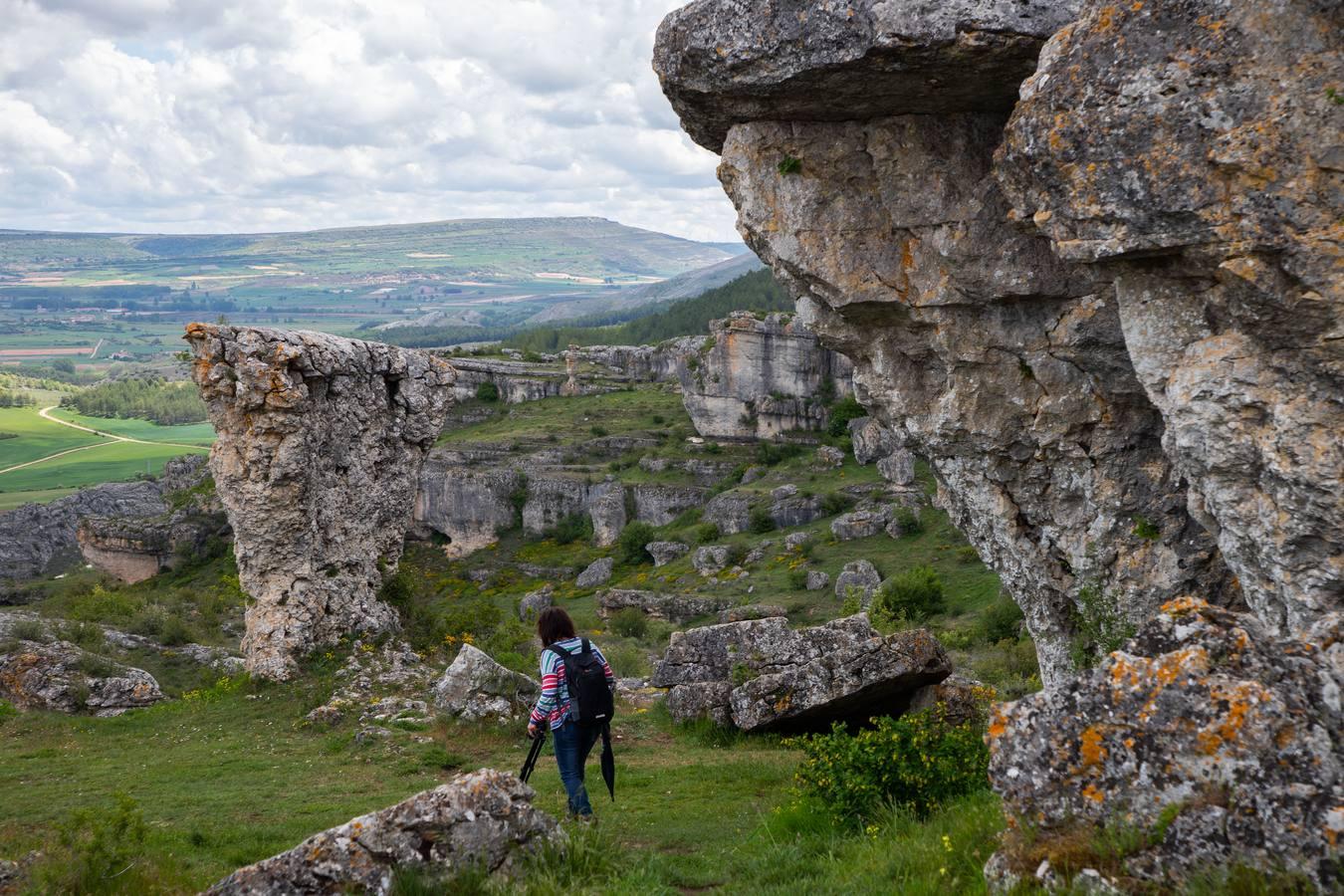 Un paseo por el monumento natural de Las Tuerces
