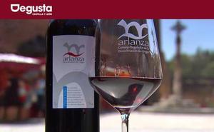La cosecha del 2017 de los vinos de la DO Arlanza es «muy buena»