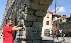 Los huecos del Acueducto de Segovia cobijan la mayor colonia de vencejos de Europa