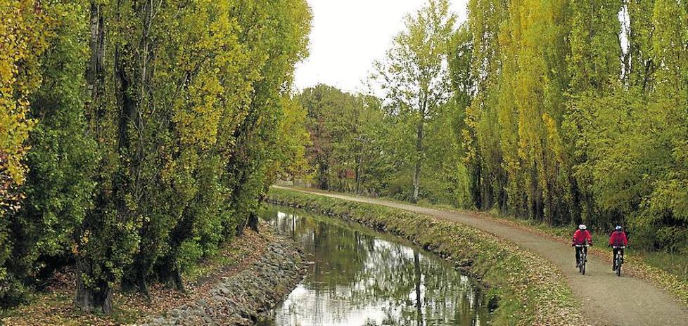 Laguna muestra este verano la riqueza y el patrimonio ambiental de su entorno