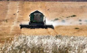 La economía de Castilla y León crecerá una décima más, hasta el 2,6% este año, según EspañaDuero