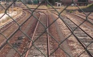 Adif reforzará el vallado de la línea León-Valladolid para proteger las vías frente a la entrada de conejos