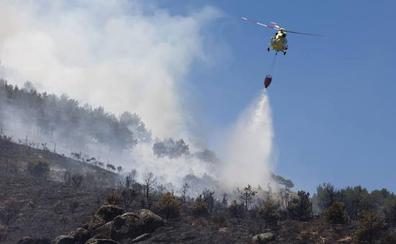 Dos incendios en Ávila movilizan a numerosos medios