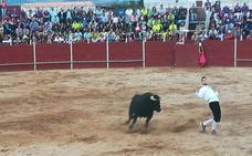 El palentino Raúl Arreal se proclama campeón en el concurso de cortes de Cigales