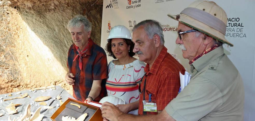 La última campaña de excavaciones en Atapuerca completa a 'Sara', una homínida de 300.000 años de antigüedad
