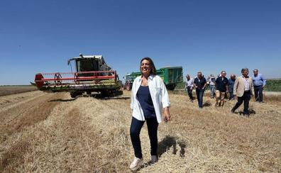 La cosecha de cereal será la mejor de los últimos cinco años con siete millones de toneladas