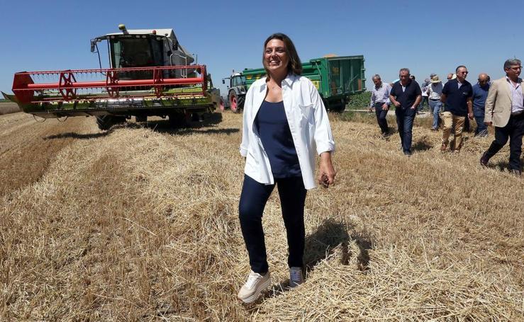 La consejera de Agricultura presenta los datos relativos a la cosecha de cereales de 2018