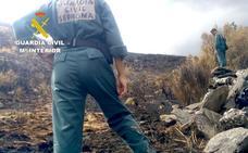 La Guardia Civil detiene al autor del incendio forestal de 'La Cabrera', que quemó 9.000 hectáreas