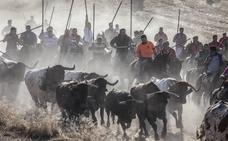 Entre el 20% y el 30% del presupuesto de festejos va para los toros