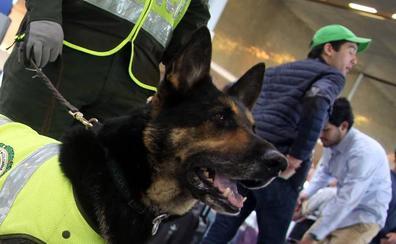 Los narcos ponen precio a la cabeza de una perra antinarcóticos