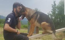 Muere envenenado Kaos, el perro que salvó vidas en el terremoto de Amatrice