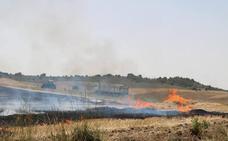 Un incendio calcina 62 hectáreas de cereal y monte en Vertavillo
