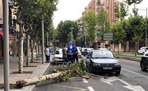 El viento se acercó ayer a los 90 kilómetros por hora en Salamanca