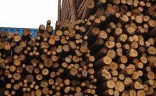 Valladolid, la provincia que más valor por la venta de madera obtuvo en el segundo trimestre