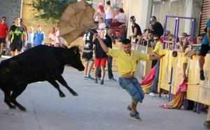Palencia celebrará 80 festejos taurinos en agosto y septiembre