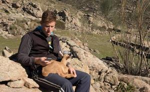 Tecnología móvil para evitar los ataques de lobos
