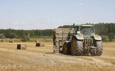La cosecha supera los 1,2 millones de toneladas en Palencia