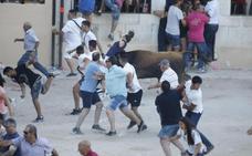 Un novillo salta fuera del redondel y siembra el caos en la capea de Peñafiel