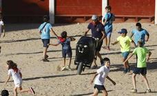 Carretones en la plaza de Coso de Peñafiel
